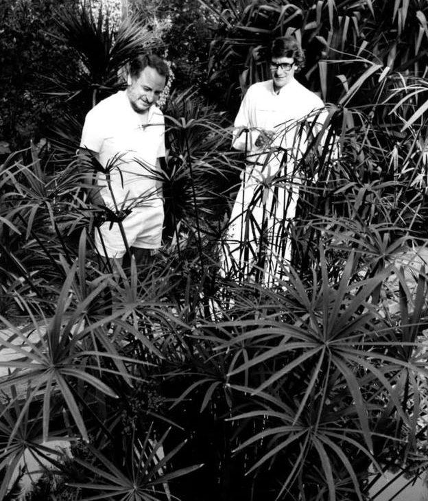 Saint Laurent és társa Pierre Bergé a Jardin Majorelle kertben