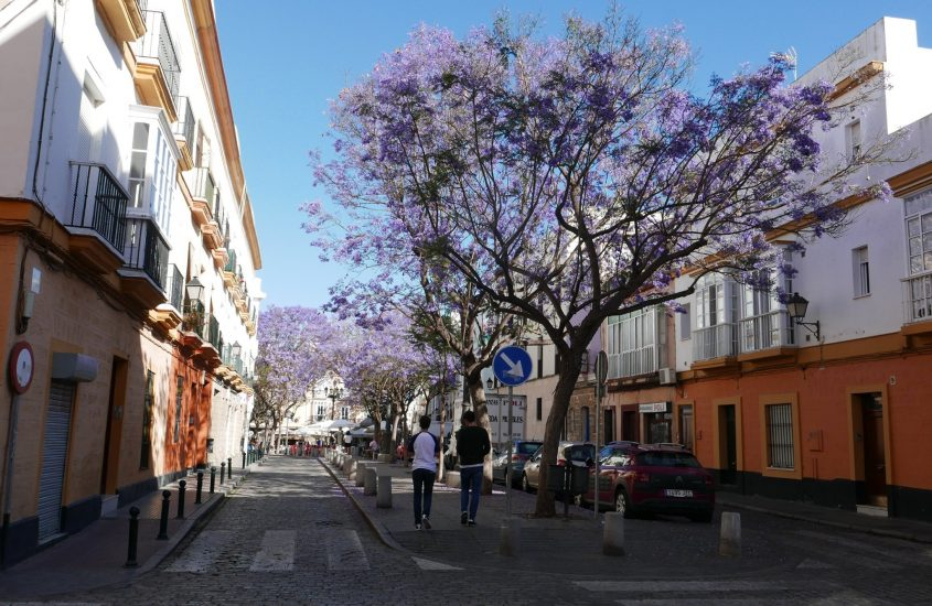 Andalúz utazás 14. rész, Tarifa-Cadiz